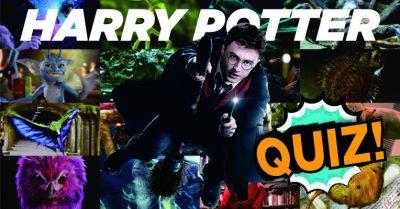 Magical Creatures - Harry Potter Quiz